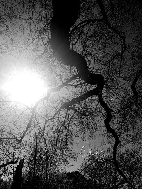 20160324-18 Trees - Diane Ong