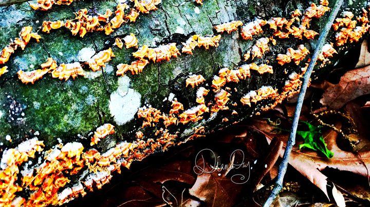 20160324-19 Trees - Diane Ong