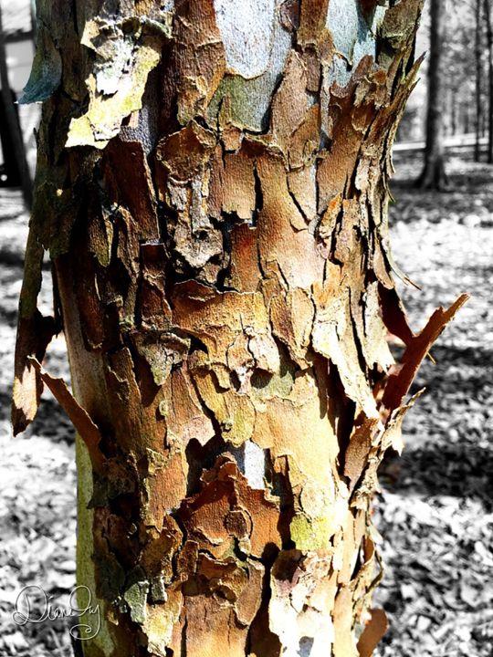 20160324-21 Trees - Diane Ong