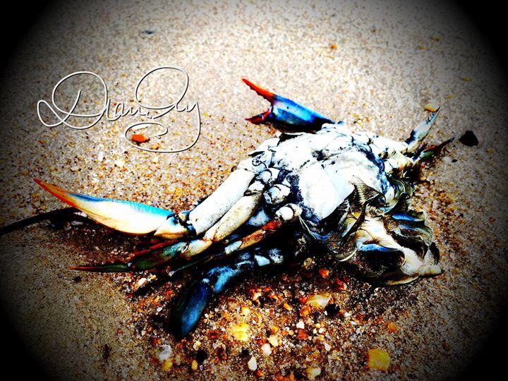 2016-09-22 Sea Giveth 9 - Diane Ong