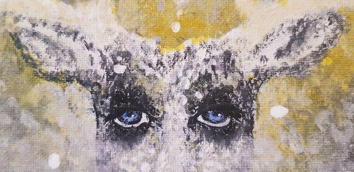 Pi ~ The Deer's Eyes - Renata Maroti