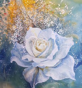 THE WHITE ROSE /EVA/ - Renata Maroti