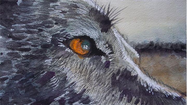 Dog eye - Jose Hau Artwork
