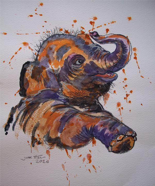 Elefante colores - Jose Hau Artwork