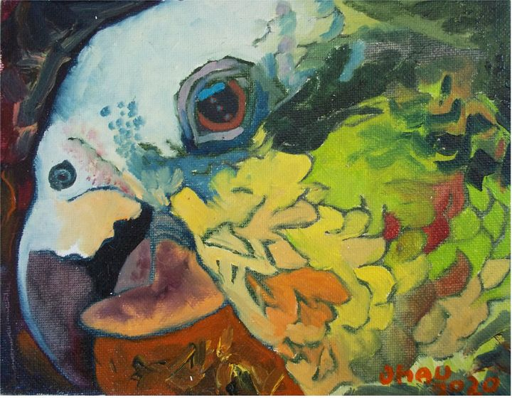 Cotorro - Jose Hau Artwork