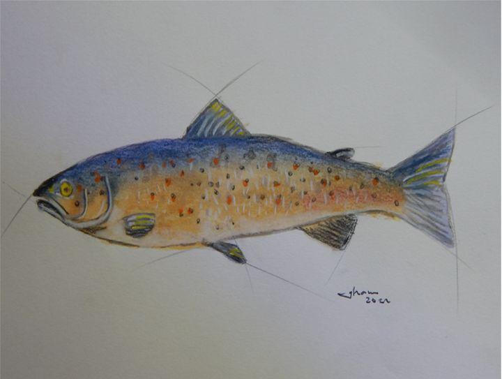 fish - Jose Hau Artwork