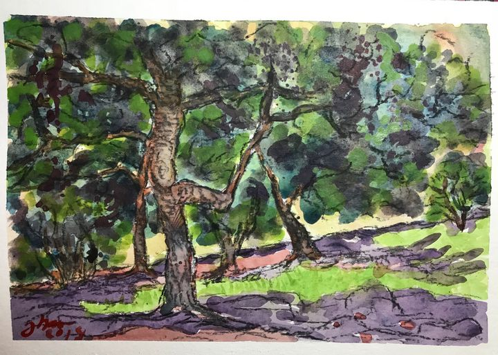 Forest - Jose Hau Artwork