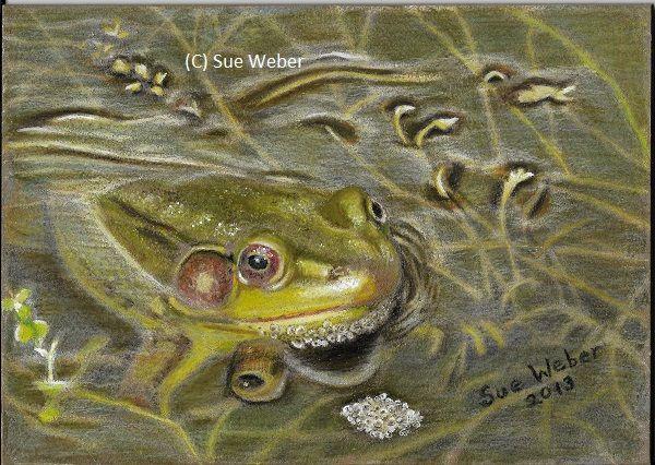 Froggy - Sue Weber