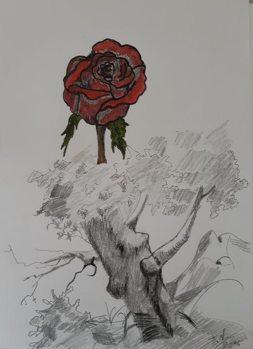 Tree with the rose - Polina NTALAMPIRA