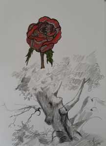 Tree with the rose