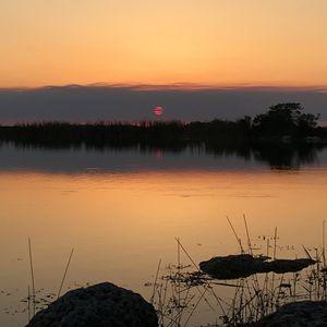 Everglades - Jimmy G