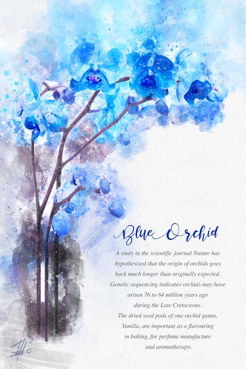 Blue Orchid - Theodor Decker