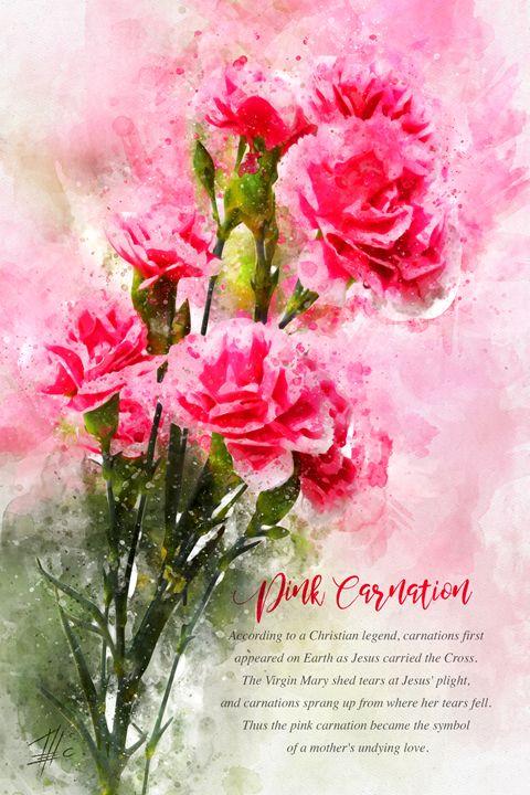 Pink Carnation - Theodor Decker