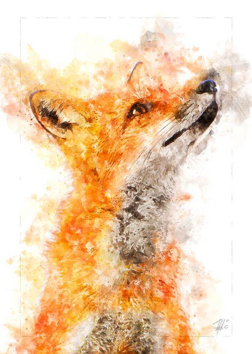 Fox - Theodor Decker