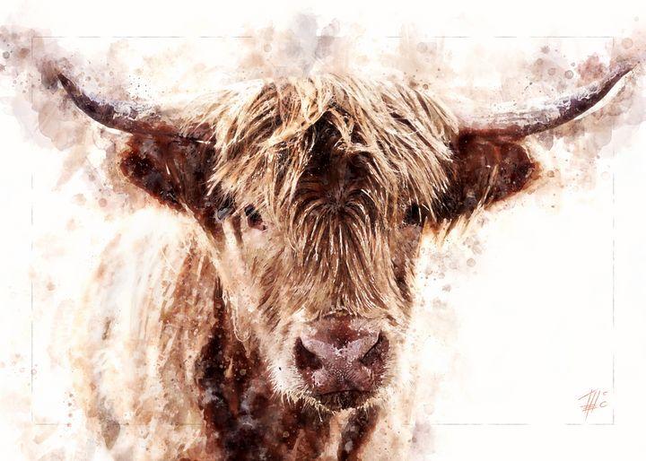 Highland Cattle - Theodor Decker
