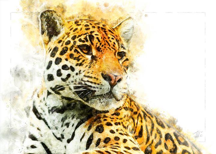 Leopard - Theodor Decker