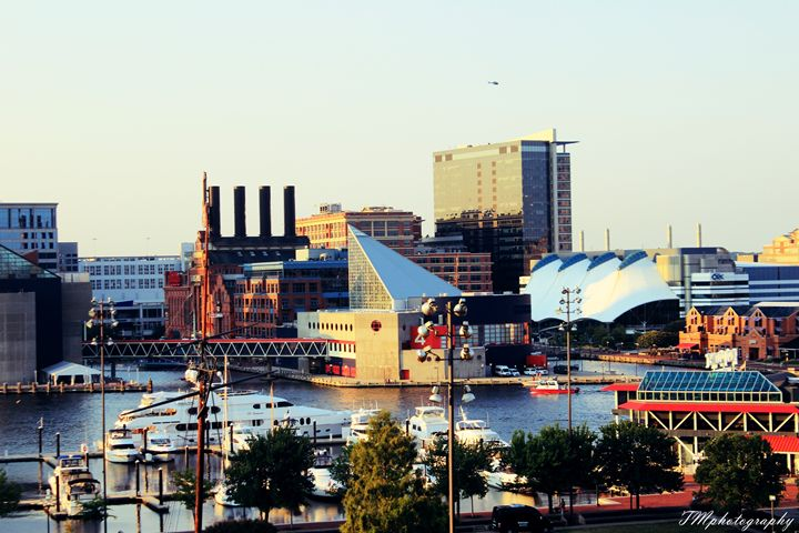 Federal Hill Image of Inner Harbor - TMphotographyBaltimore