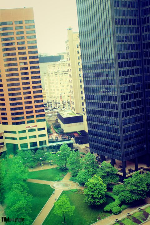 Brick Bodies View - TMphotographyBaltimore