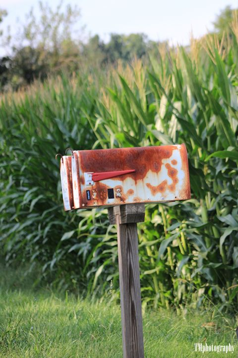 Reisterstown Mailbox in Nature - TMphotographyBaltimore