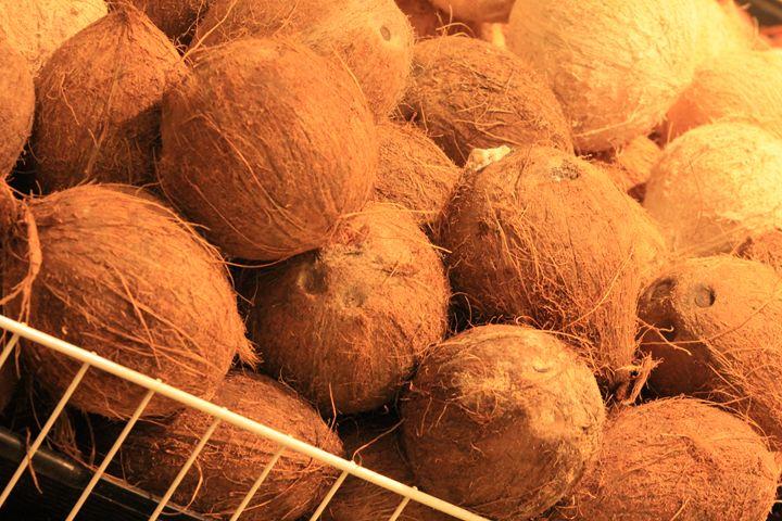 Coconuts - TMphotographyBaltimore