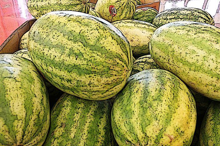 Cartoon Watermelon - TMphotographyBaltimore