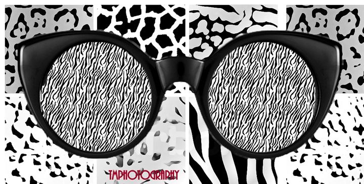 Black and White Sunglasses - TMphotographyBaltimore