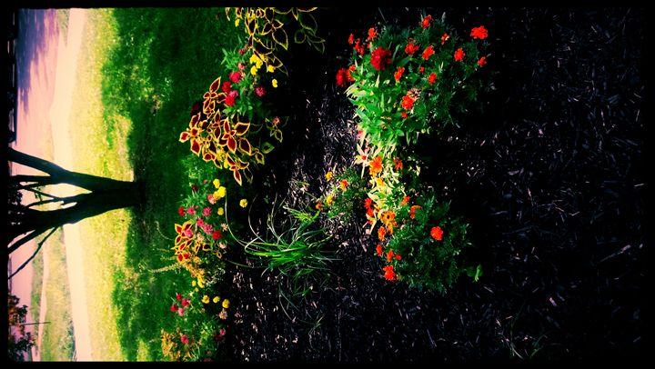 Latanya's Garden - TMphotographyBaltimore