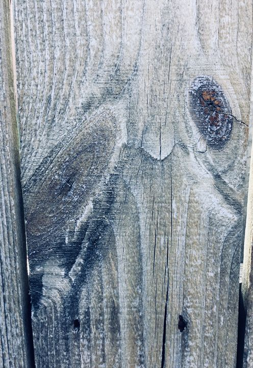 Sad Owl - My Linh O'Quinn