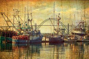 Fishing Fleet In Yaquina Bay