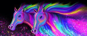 Rainbow Stallions