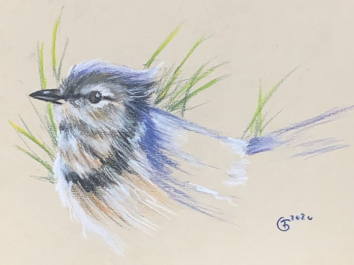Blue bird - Troy Giles