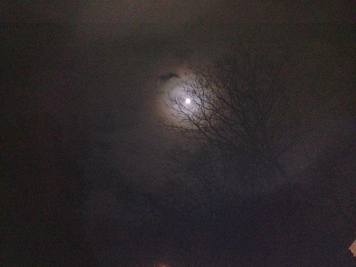 Moonlight in the Country - Karyl's Art Studio