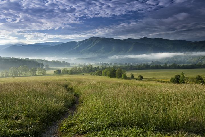 Cades Cove Meadow - Vision & Light Photography