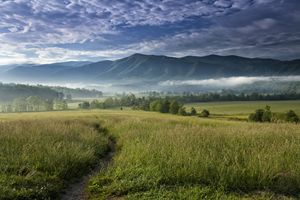 Cades Cove Meadow