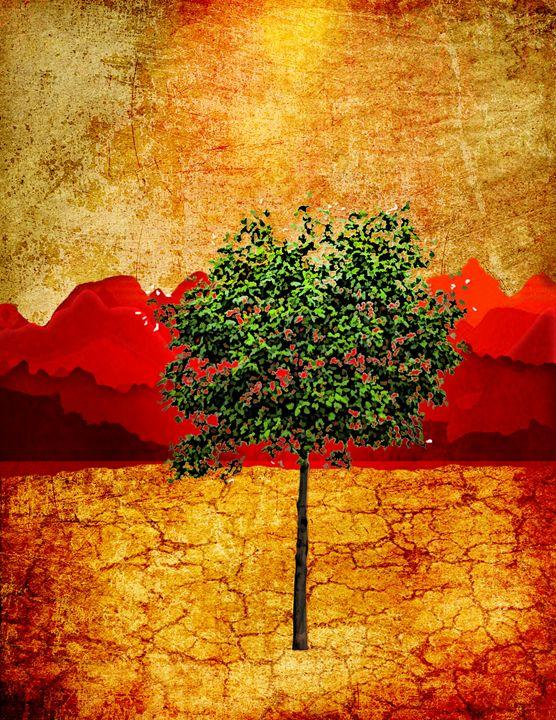 Red Sky - Akimi Art