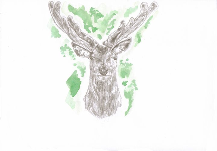 Deer watercolour - Steph's art