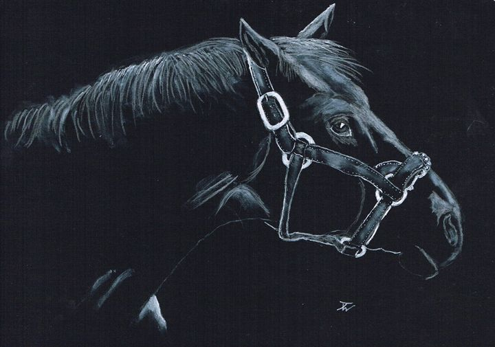Hawse - Anthony Wickens, The Pet Artist