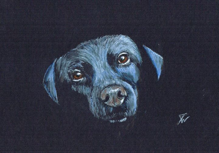 Black Lab - Anthony Wickens, The Pet Artist