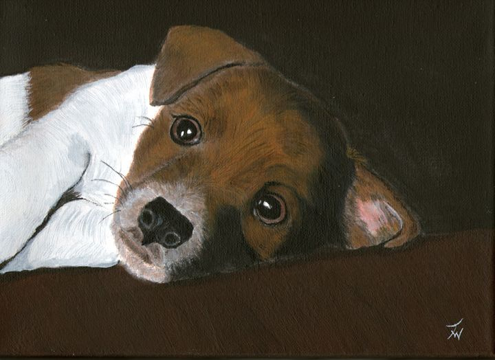 Jack Pup - Anthony Wickens, The Pet Artist