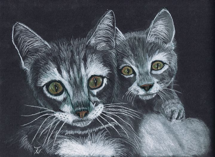 Wassat - Anthony Wickens, The Pet Artist