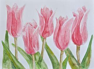 Pink Tulips - Gracie L Hampton