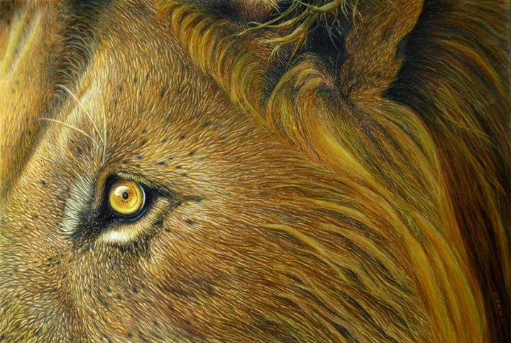 Jewel Eyed African Lion - Wildlife Art by Karen Sharp