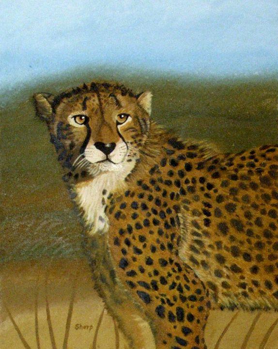 Cheatah on the Hunt - Wildlife Art by Karen Sharp