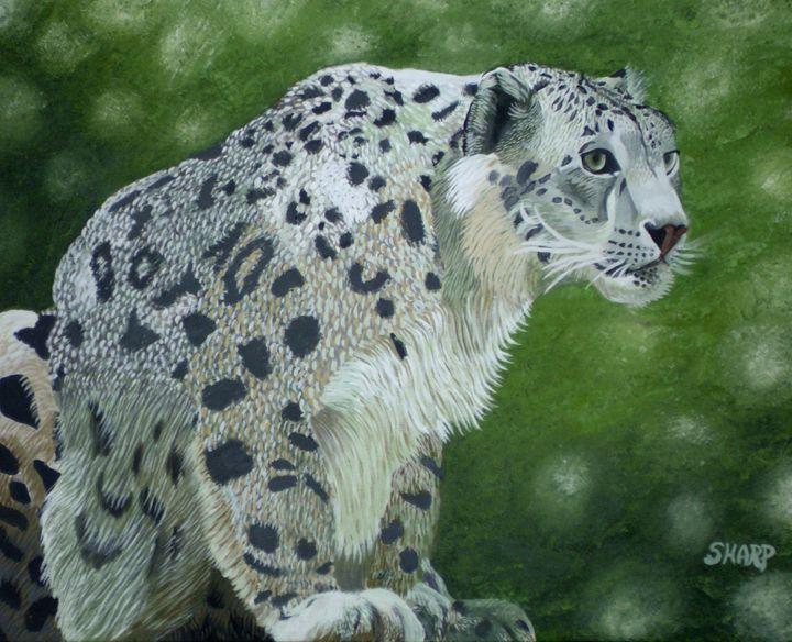 Snow Leopard - Wildlife Art by Karen Sharp