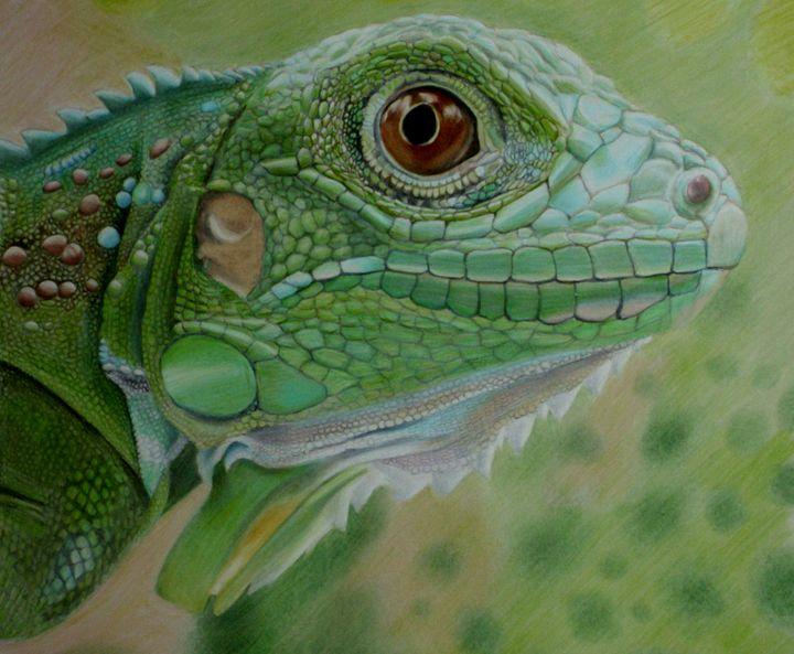 Here's Looking at You Kid - Wildlife Art by Karen Sharp