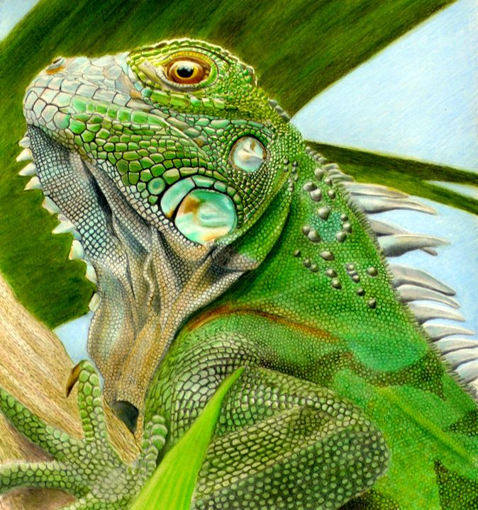 The Lizard King - Wildlife Art by Karen Sharp