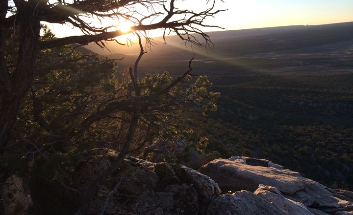 Sunset over the grand canyon - Dark Forest Creature - photography and painting
