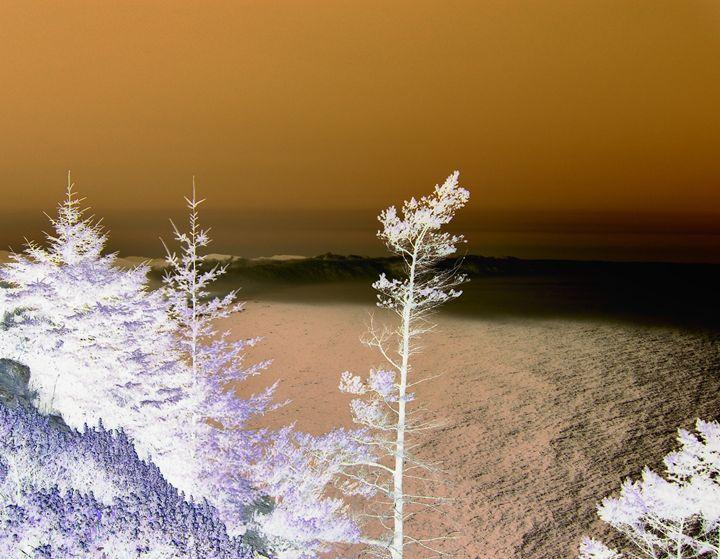 Mystic Seas - Photography by Trisha Allard
