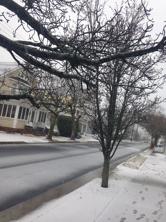 Ventor, NJ .. Snowy Day - Moments by Kash