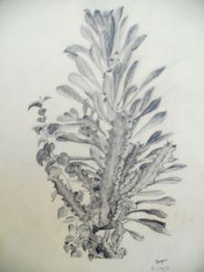 Desert Life - Gagan's Art